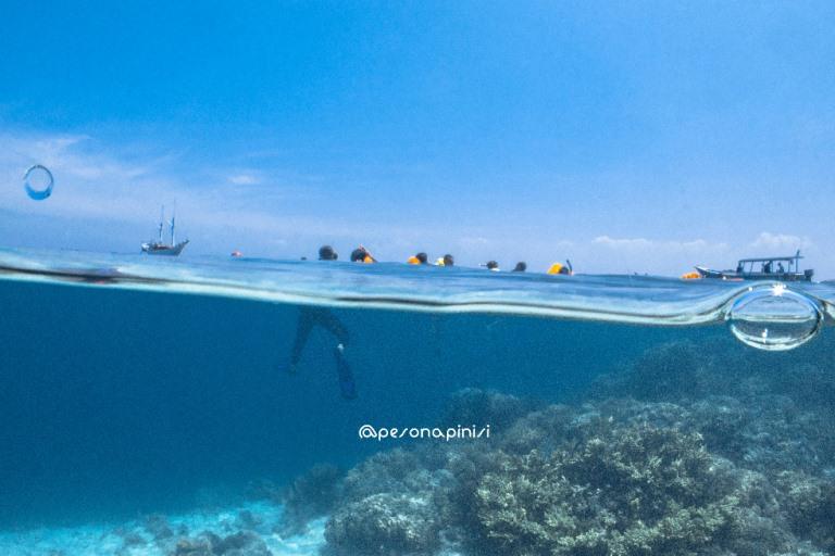 Pelajar Antusias Ikuti Pelayaran Edukasi Maritim dengan Kapal Pinisi