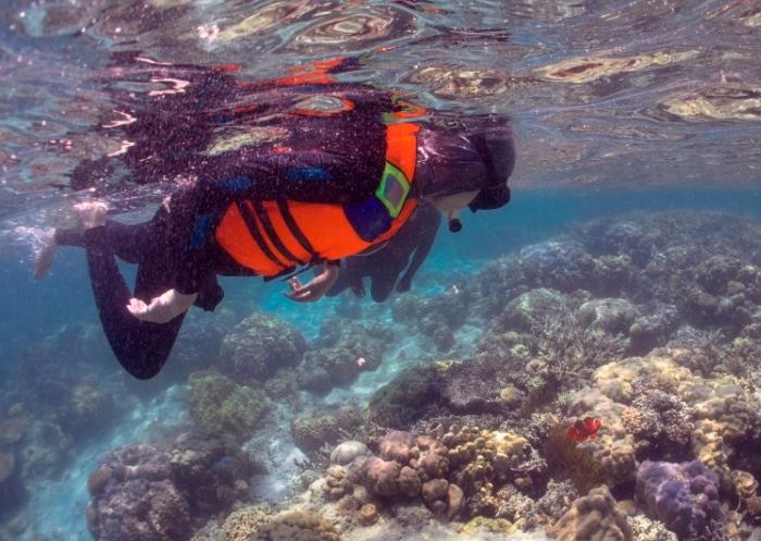 Pengenalan Biota Laut_Edukasi Maritim